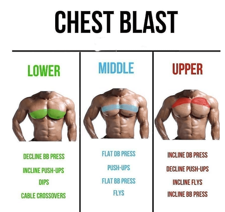 Variations of Pectoral Exercise