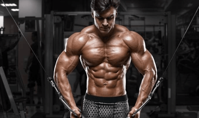 Combine muscle and fitness
