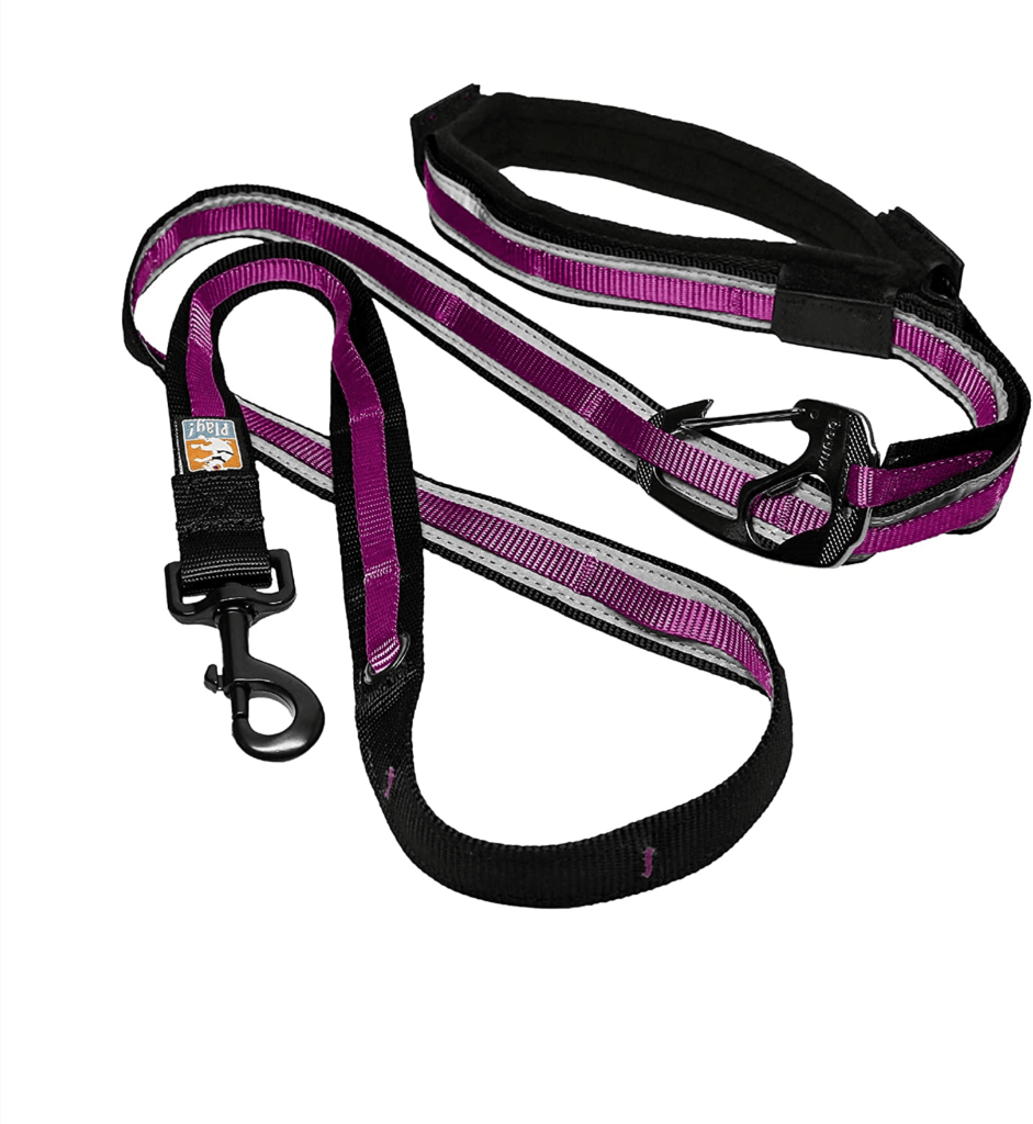 Hands-Free Leash for Dogs