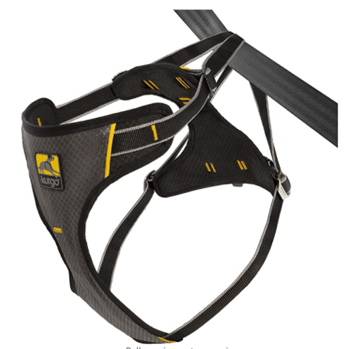 Kurgo Impact Car Safety Dog Harness