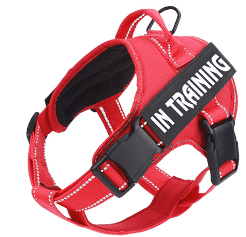 No Pull Dog Harness with Reflective Straps