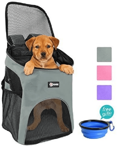 Pawsee Pet Carrier