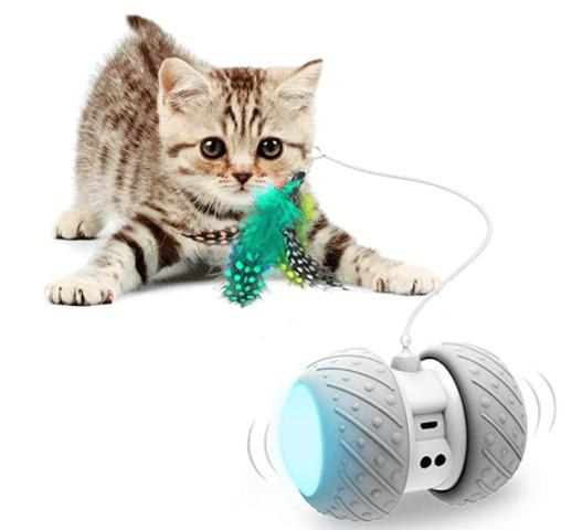 Interactive Robotic Cat Toys