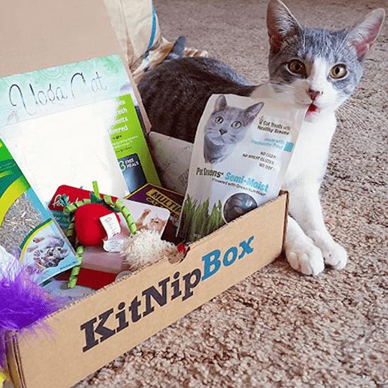 KitNipBox Cat Toys