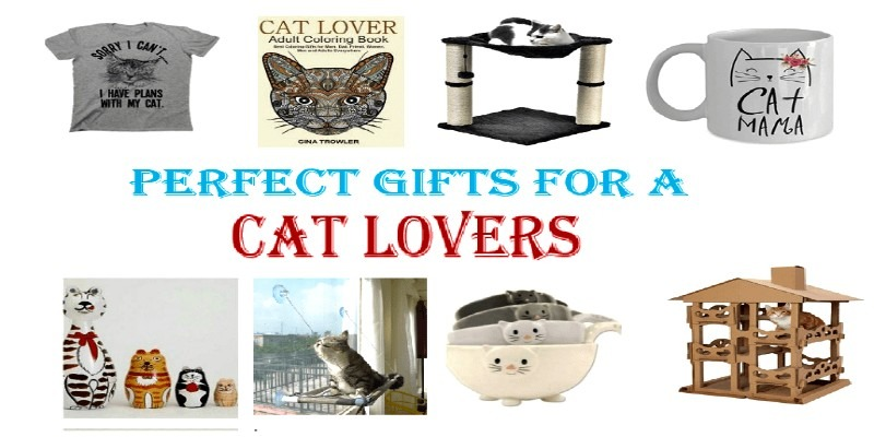 gifts for a cat lover