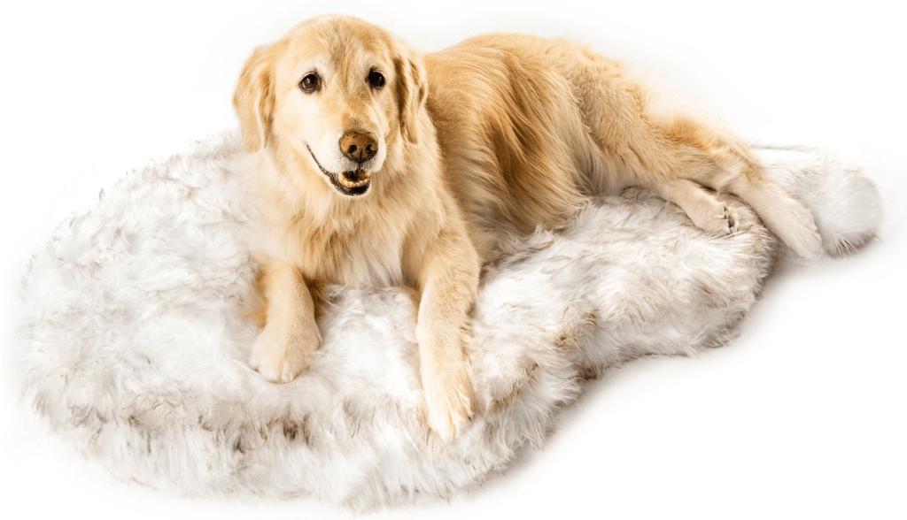 PawBrand's PupRug Pet Beds