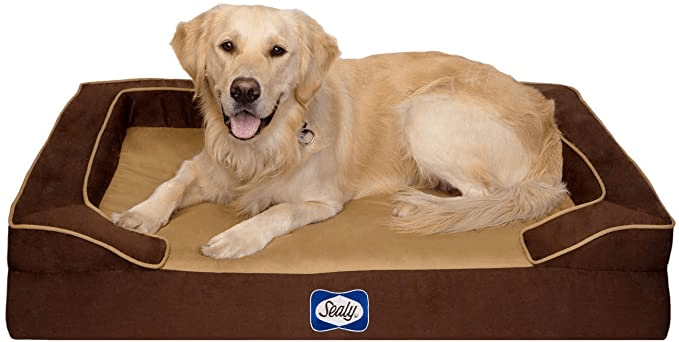 Sealy Lux Premium Orthopedic Bolster Dog Bed