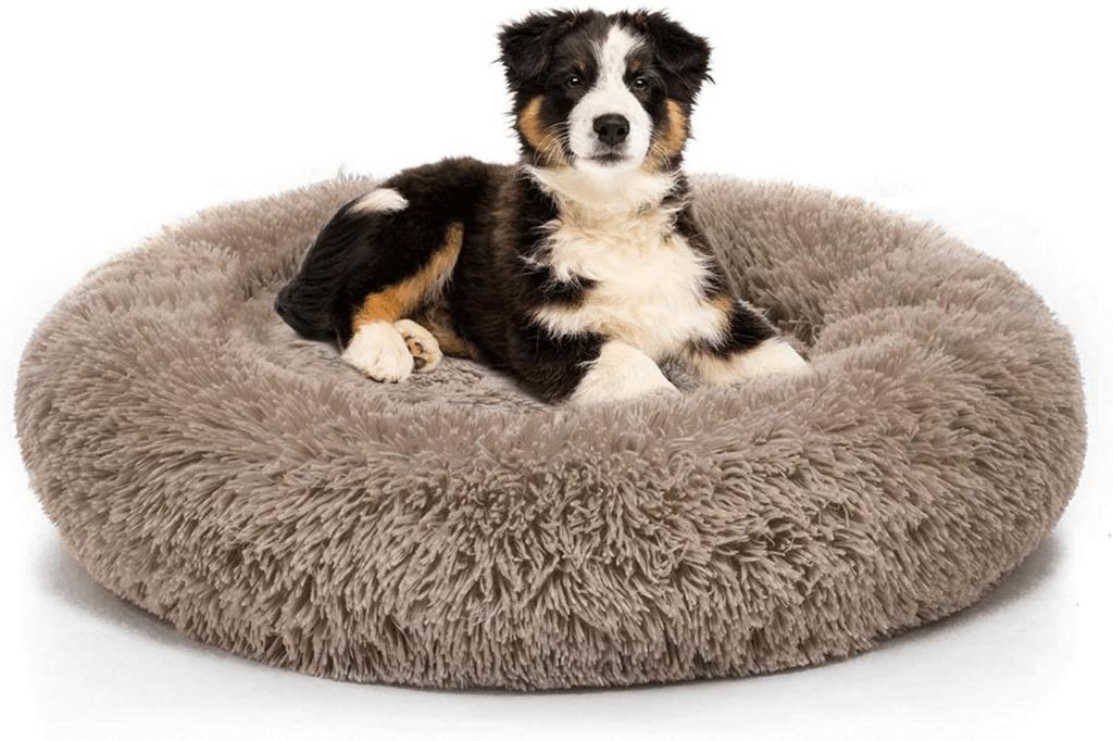 TORDES Dog Bed Round Cushion Bed