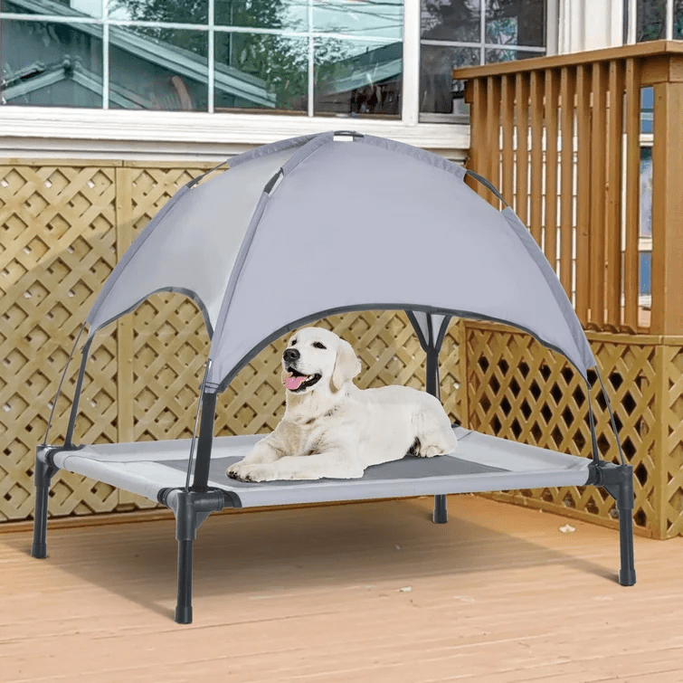 Tucker Murphy Pet Beds Dog Cot with Canopy